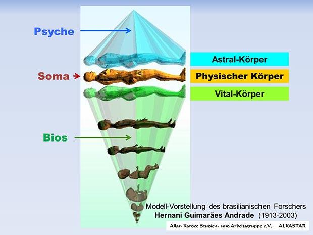 Psyche - Soma - Bios